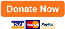 donate-now_button